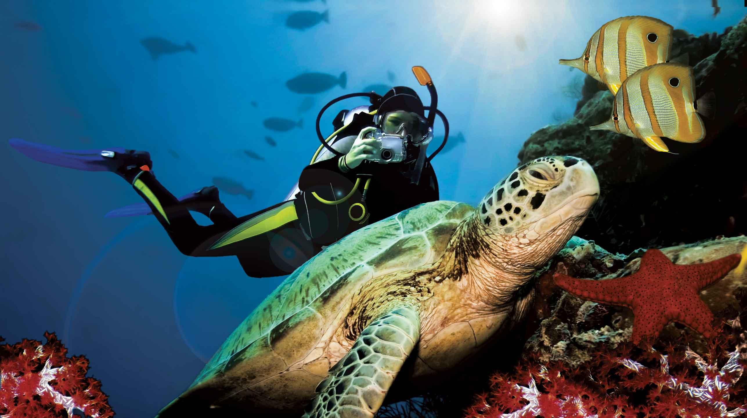 Honduras – koralowe Karaiby
